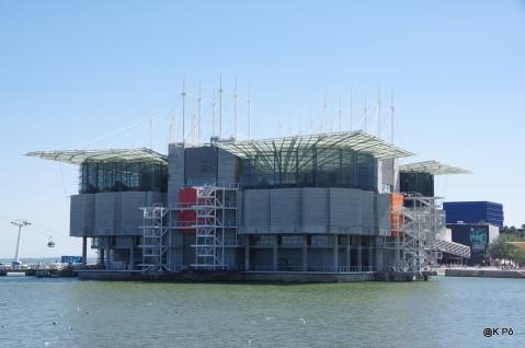 Aquarium (le plus grand d'Europe)